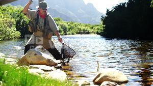 Fly fisherman catching trout in fishing net