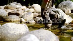 Fly fisherman walking in river on a sunny day