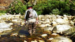 Fly fisherman walking in river with fishing rod
