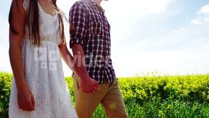 Romantic couple holding hands while walking in field