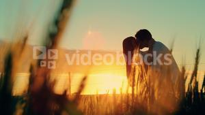 Affectionate couple kissing in field