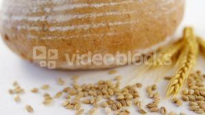 Bread loaf with wheat grain on white background